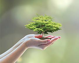 Schutz der Umwelt bei amd