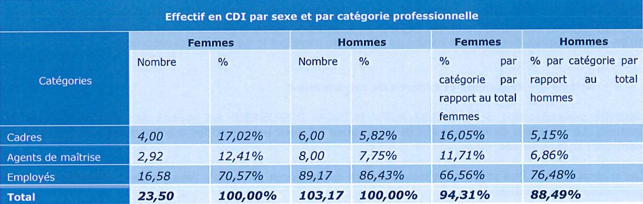 Effectif en CDI par sexe et par catégorie socio professionnelle