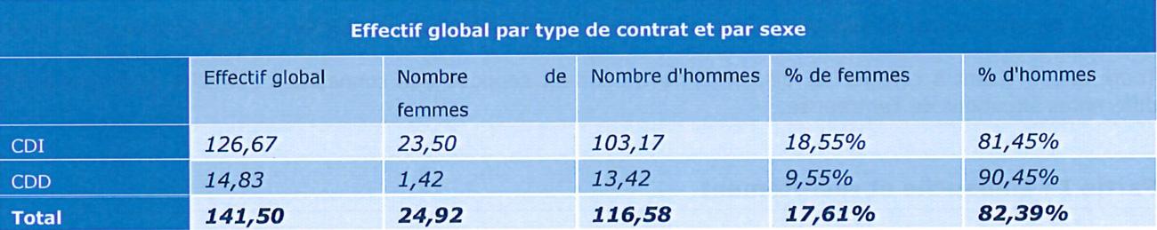 Effectif global par type de contrat et par sexe