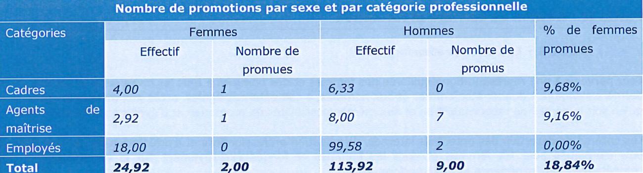 Nombre de promotions par sexe et par catégorie socio professionnelle